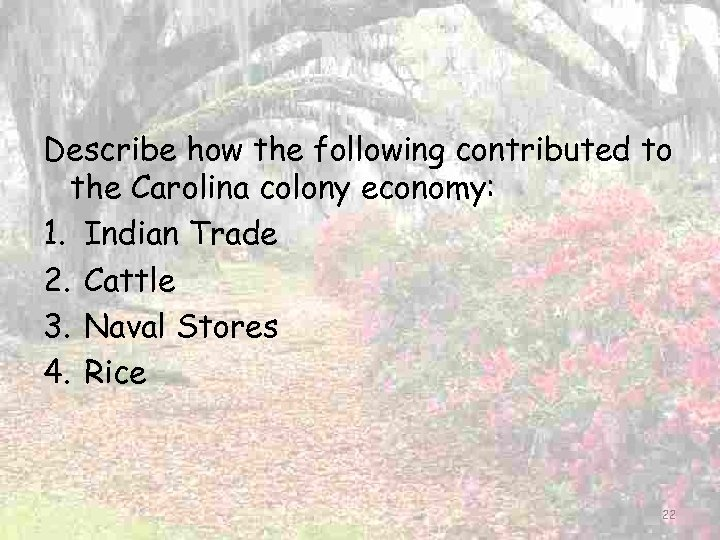 Describe how the following contributed to the Carolina colony economy: 1. Indian Trade 2.