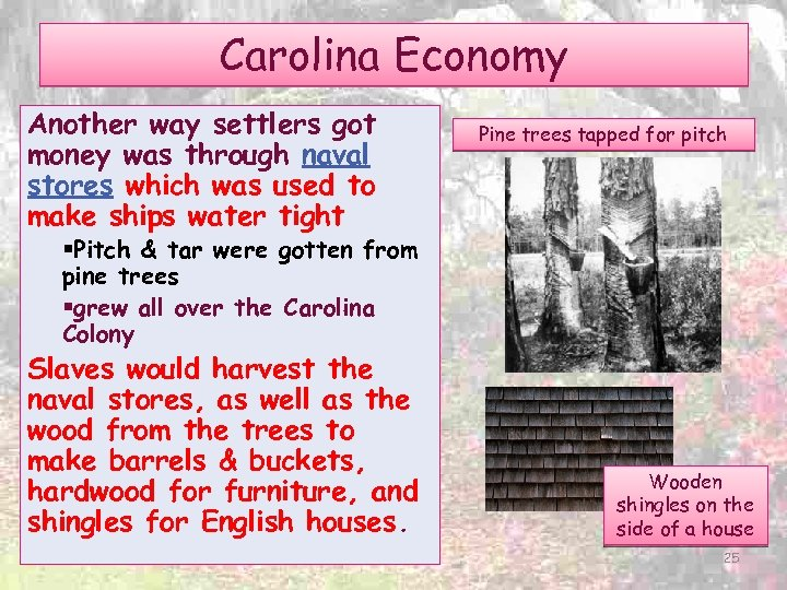 Carolina Economy Another way settlers got money was through naval stores which was used