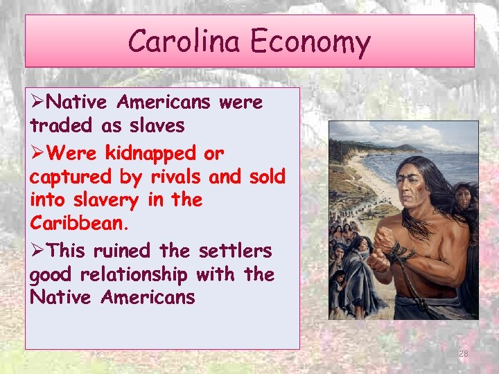 Carolina Economy ØNative Americans were traded as slaves ØWere kidnapped or captured by rivals