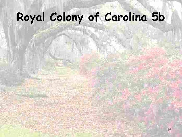 Royal Colony of Carolina 5 b 29