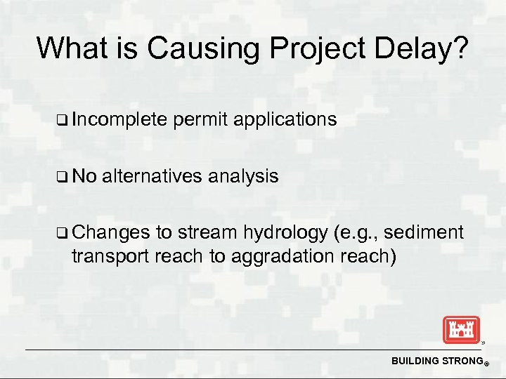 What is Causing Project Delay? q Incomplete q No permit applications alternatives analysis q