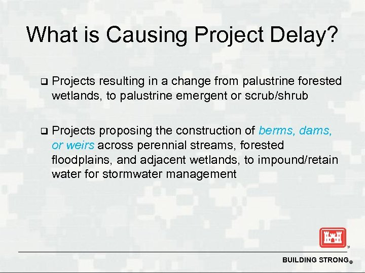 What is Causing Project Delay? q Projects resulting in a change from palustrine forested