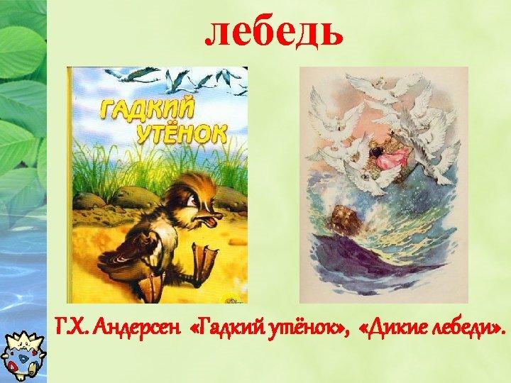 лебедь Г. Х. Андерсен «Гадкий утёнок» , «Дикие лебеди» .