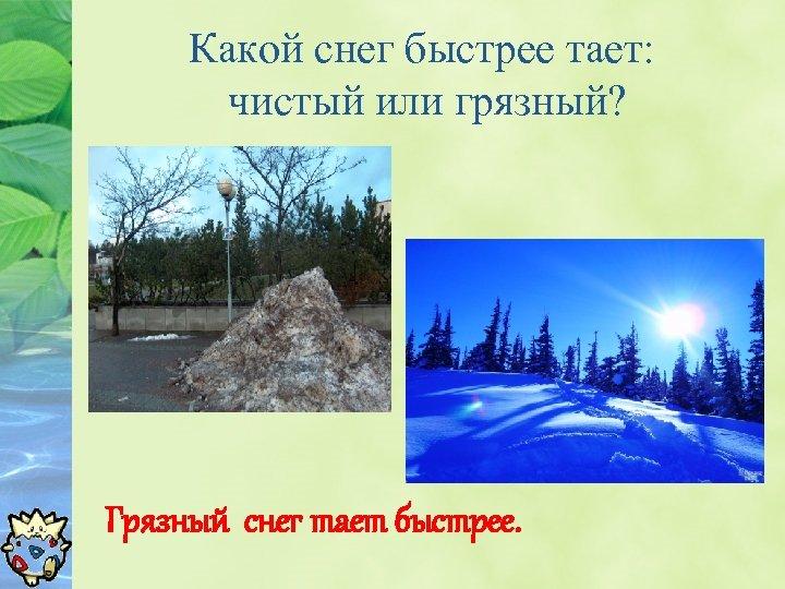 Какой снег быстрее тает: чистый или грязный? Грязный снег тает быстрее.