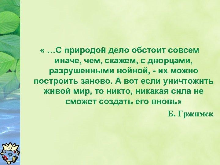 « …С природой дело обстоит совсем иначе, чем, скажем, с дворцами, разрушенными войной,