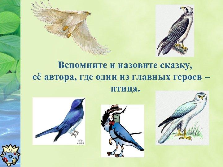 Вспомните и назовите сказку, её автора, где один из главных героев – птица.
