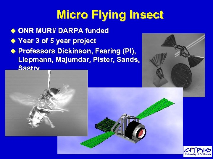 Micro Flying Insect u ONR MURI/ DARPA funded u Year 3 of 5 year