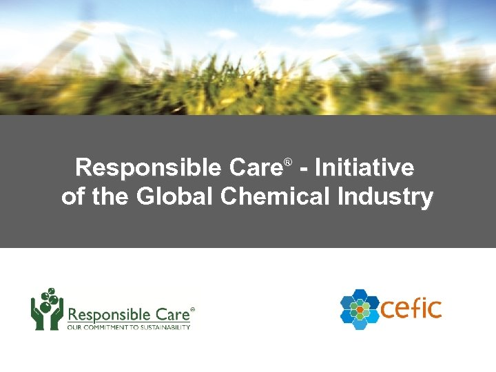 Responsible Care® - Initiative of the Global Chemical Industry 8