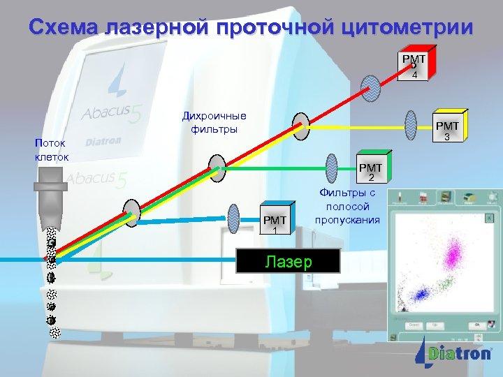 Схема лазерной проточной цитометрии PMT 4 Дихроичные фильтры PMT 3 Поток клеток PMT 2