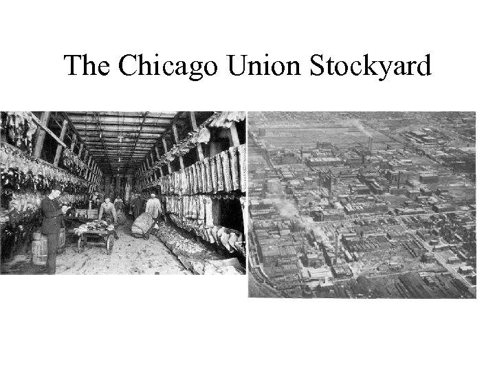 The Chicago Union Stockyard