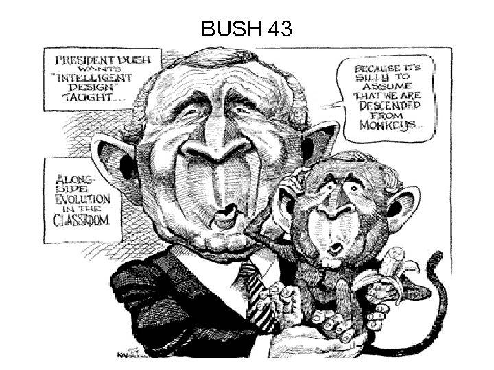 BUSH 43