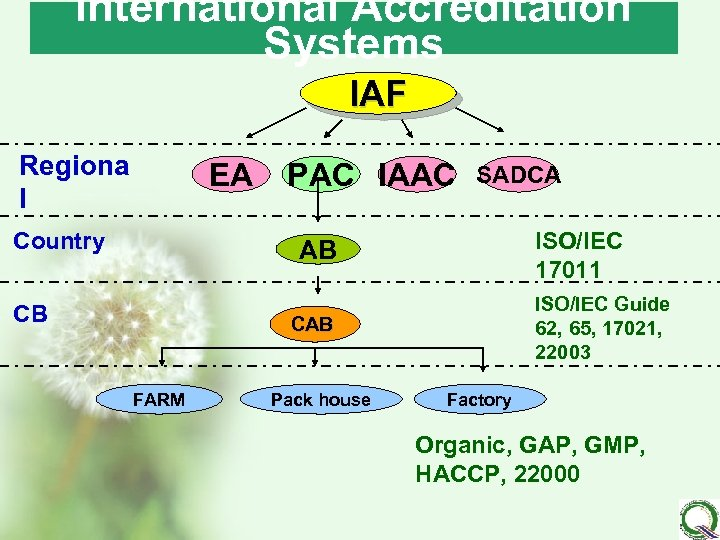 International Accreditation Systems IAF Regiona l EA Country PAC IAAC SADCA ISO/IEC 17011 AB