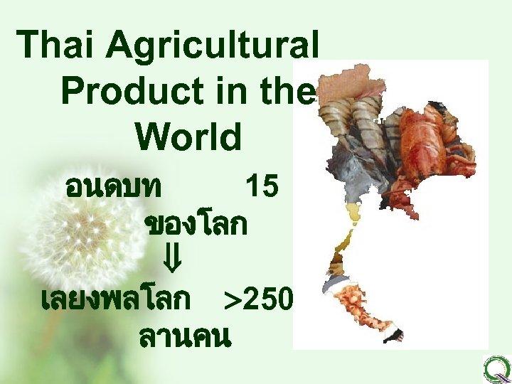 Thai Agricultural Product in the World อนดบท 15 ของโลก เลยงพลโลก 250 ลานคน