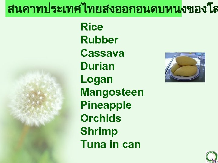 สนคาทประเทศไทยสงออกอนดบหนงของโล Rice Rubber Cassava Durian Logan Mangosteen Pineapple Orchids Shrimp Tuna in can