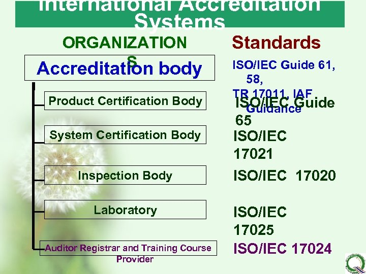 International Accreditation Systems ORGANIZATION S Accreditation body Product Certification Body System Certification Body Inspection