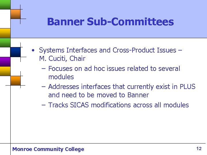 Banner Sub-Committees • Systems Interfaces and Cross-Product Issues – M. Cuciti, Chair – Focuses