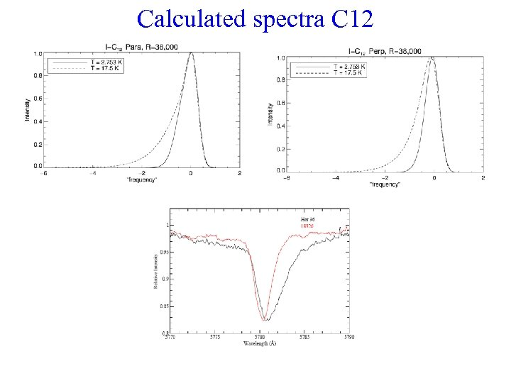 Calculated spectra C 12
