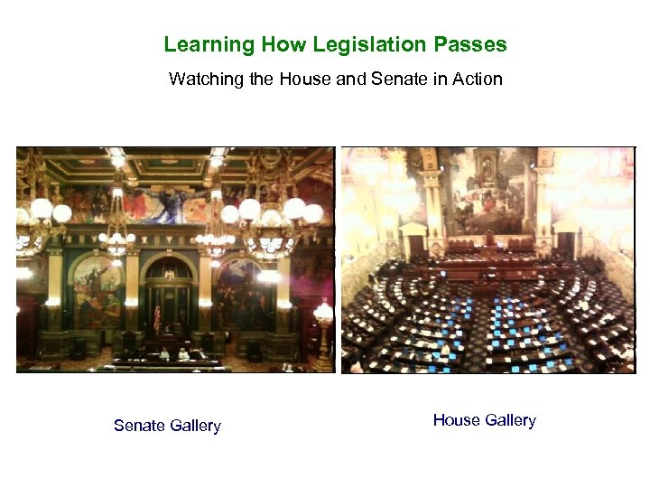 Learning How Legislation Passes Watching the House and Senate in Action Senate Gallery House