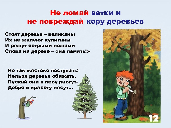 Не ломай ветки и не повреждай кору деревьев Стоят деревья – великаны Их не
