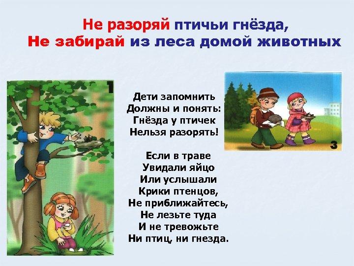 Не разоряй птичьи гнёзда, Не забирай из леса домой животных Дети запомнить Должны и