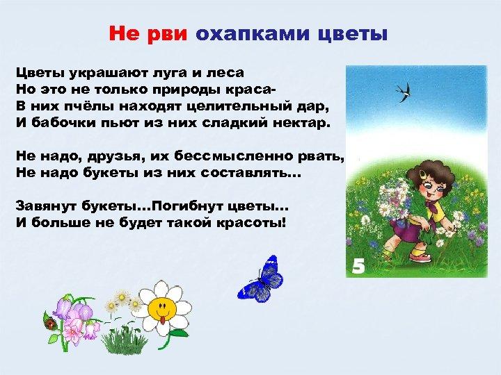 Не рви охапками цветы Цветы украшают луга и леса Но это не только природы