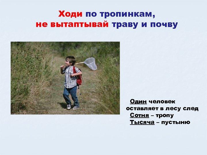 Ходи по тропинкам, не вытаптывай траву и почву Один человек оставляет в лесу след