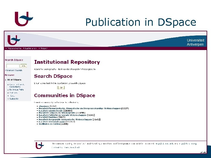 Publication in DSpace 11