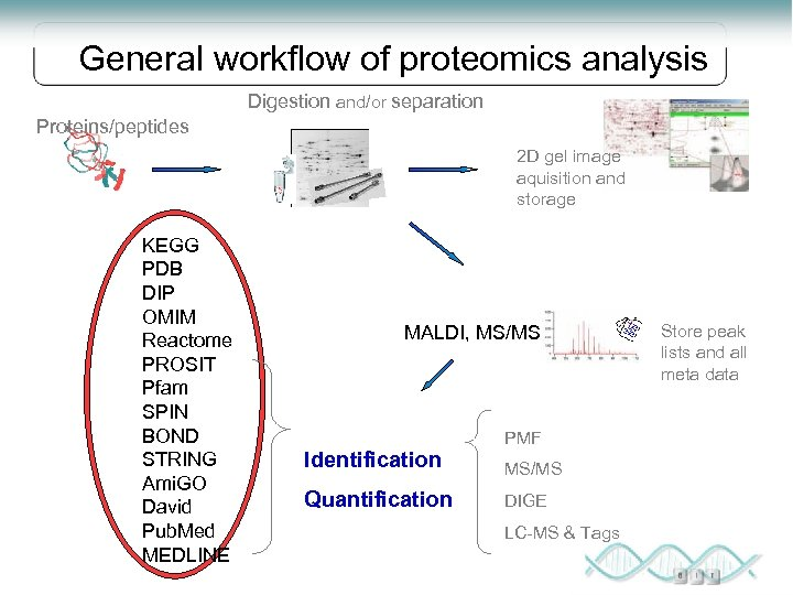 Proteomics Bioinformatics MBI Master s Degree Program in