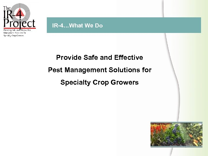 IR 4…What We Do Provide Safe and Effective Pest Management Solutions for Specialty Crop