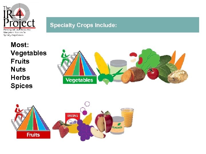 Specialty Crops Include: Most: Vegetables Fruits Nuts Herbs Spices