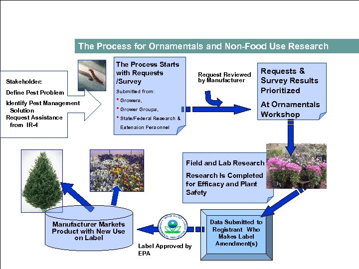 The Process for Ornamentals and Non Food Use Research Stakeholder: The Process Starts with