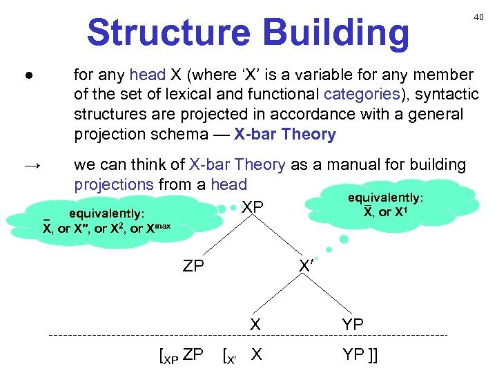 Structure Building ● → 40 for any head X (where 'X' is a variable
