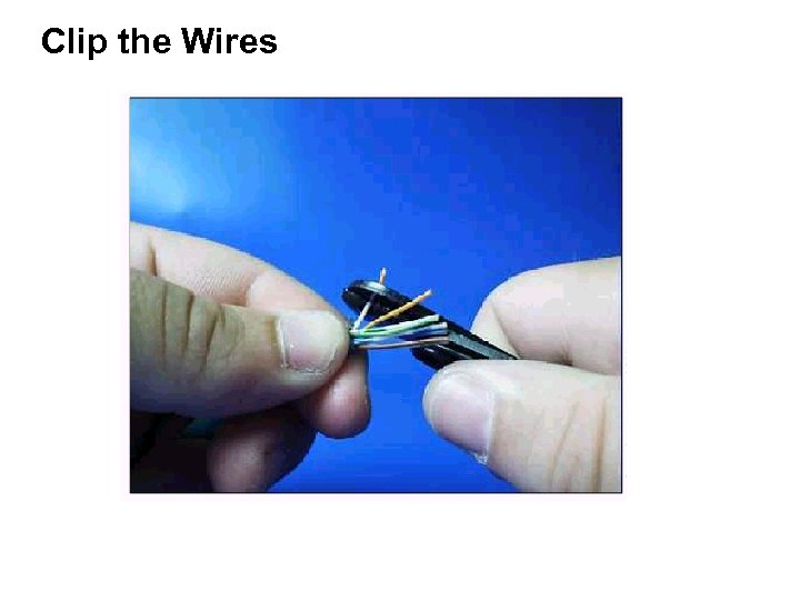 Clip the Wires