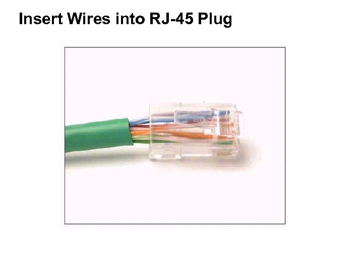 Insert Wires into RJ-45 Plug