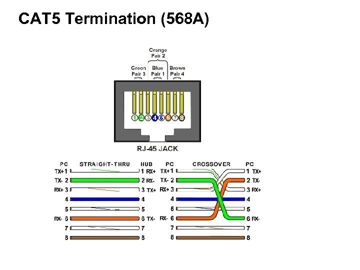 CAT 5 Termination (568 A)