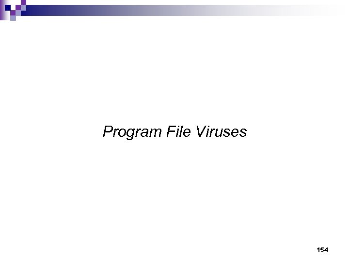 Program File Viruses 154