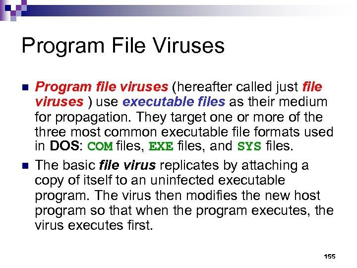 Program File Viruses n n Program file viruses (hereafter called just file viruses )