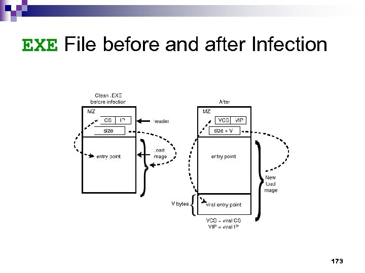 EXE File before and after Infection 173