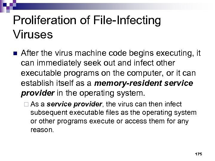 Proliferation of File-Infecting Viruses n After the virus machine code begins executing, it can