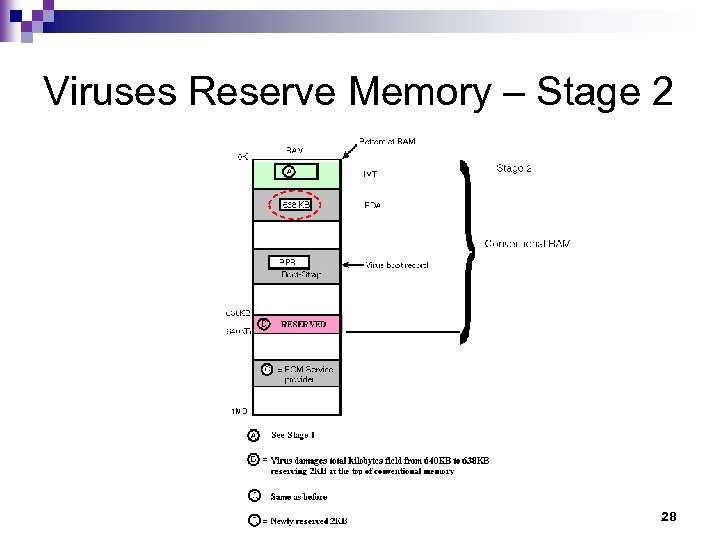 Viruses Reserve Memory – Stage 2 28