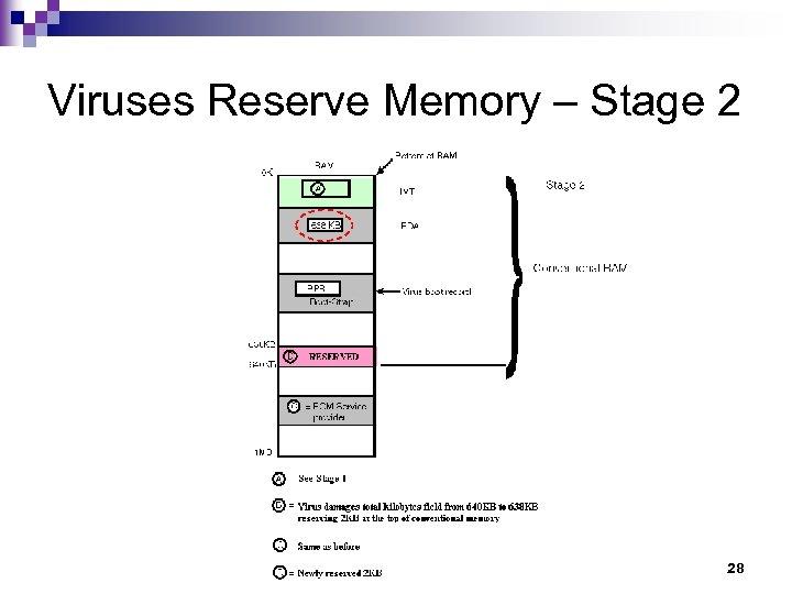Viruses Reserve Memory – Stage 2 28