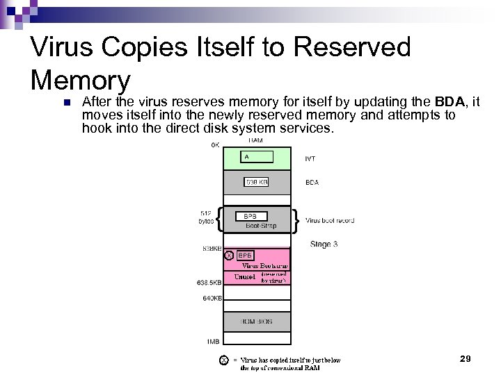 Virus Copies Itself to Reserved Memory n After the virus reserves memory for itself