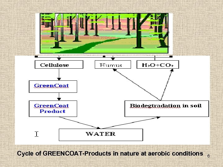 Cycle of GREENCOAT-Products in nature at aerobic conditions 6