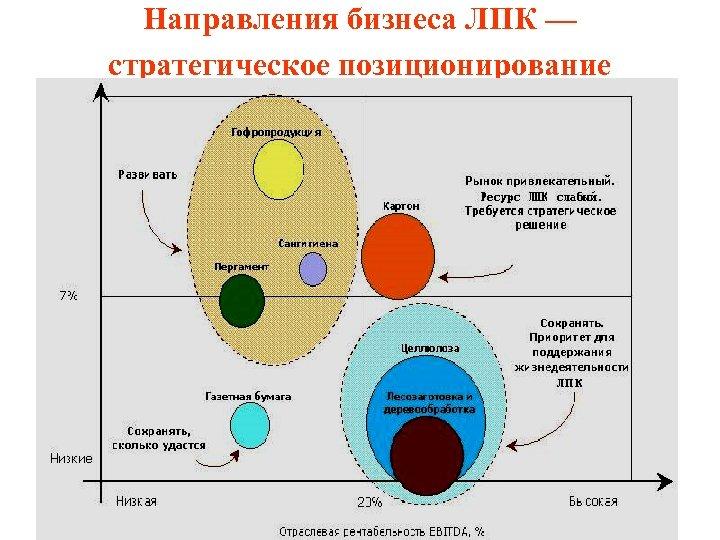 Направления бизнеса ЛПК — стратегическое позиционирование