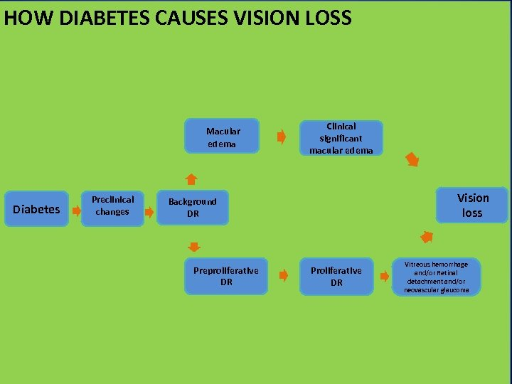 HOW DIABETES CAUSES VISION LOSS How diabetes cause vision loss Macular edema Diabetes Preclinical