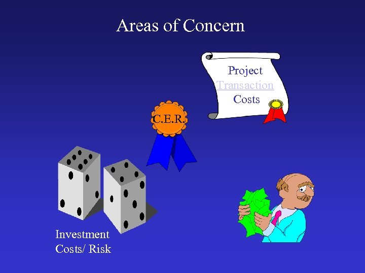 Areas of Concern Project Transaction Costs C. E. R. Investment Costs/ Risk