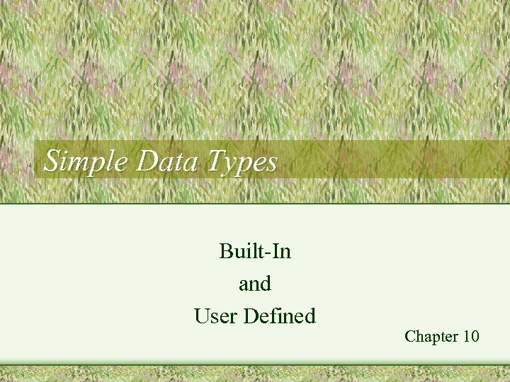 Simple Data Types Built-In and User Defined Chapter 10