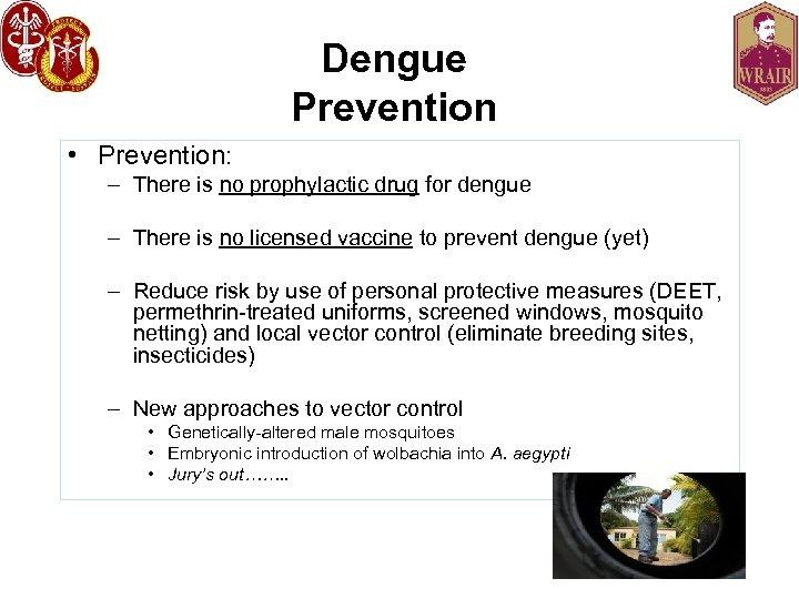 Dengue Prevention • Prevention: – There is no prophylactic drug for dengue – There