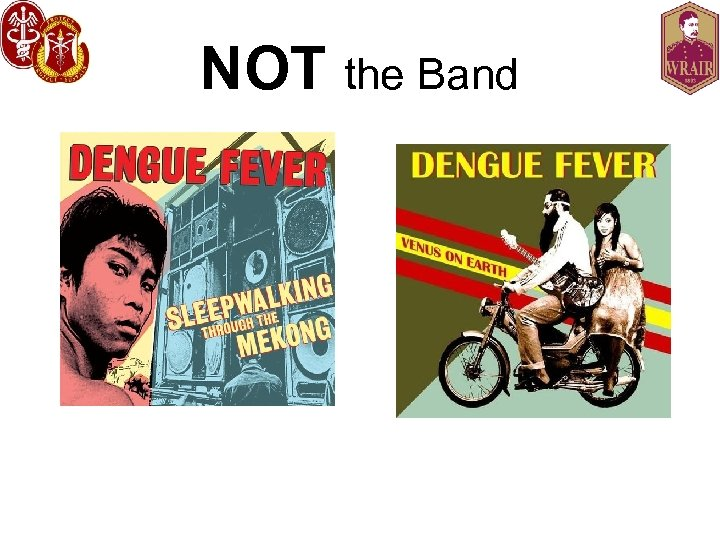 NOT the Band