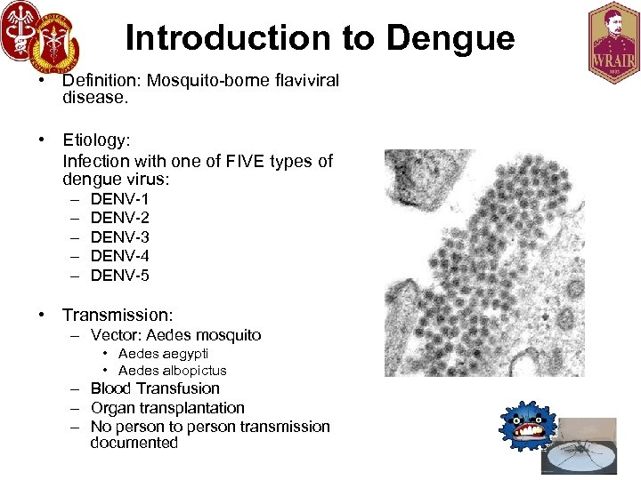 Introduction to Dengue • Definition: Mosquito-borne flaviviral disease. • Etiology: Infection with one of